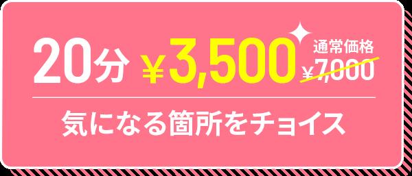 20分 ¥3,500 気になる箇所をチョイス